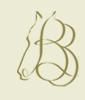 Bay Barb - La Camicia su Misura